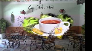 KHAI TRƯƠNG CAFE SINH VIÊN - 53 LÝ TỰ TRỌNG