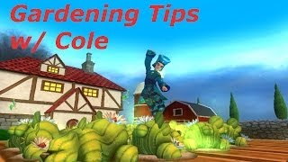 Wizard101 Gardening tip #1: Plot Stacking