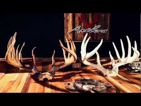 Antlers by Klaus | Finest Replicas in the World