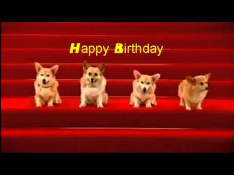 A Cute Birthday Song Sung by Dogs
