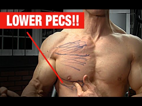 Lower Pec Punishing Exercise NO MORE SAGGY CHEST