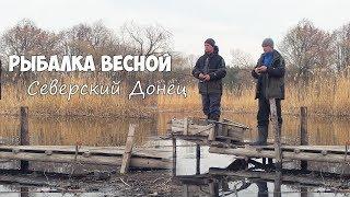 Рыбалка на Северском Донце!!! Ловля на Спиннинг или Как найти стаю окуня