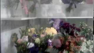 видео Купить Торт с живыми цветами на заказ с фото в Москве с доставкой