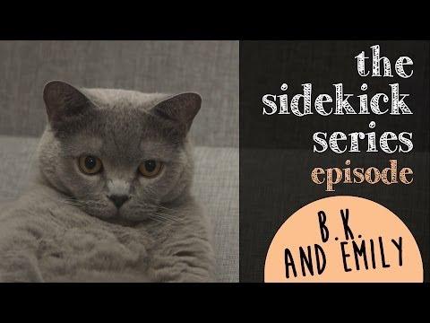 Episode 1: B.K. the British Shorthair Cat & Emily