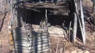 Bugout / Survival Shelter