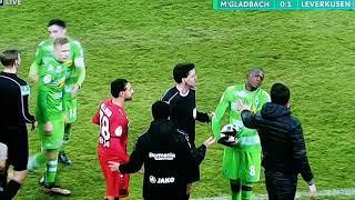Lustige Schwalbe vom Leverkusen Trainer vom 20.12.2017