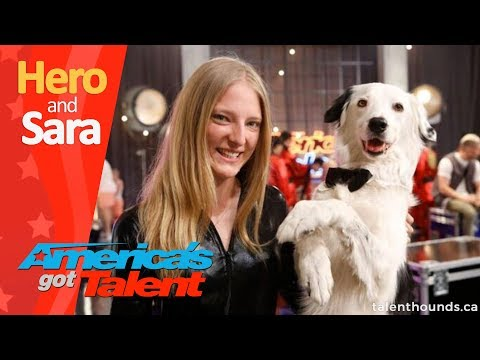 Amazing Trick Dog Hero the Super Collie and Sara Behind the Scenes
