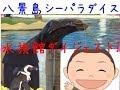 出没!アド街ック天国!で紹介!横浜 八景島シーパラダイス水族館ダイジェスト!