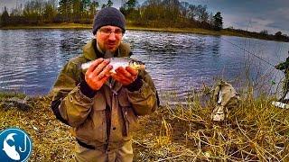 Вимба на річці. Перша трудова рибалка. Готуємо на природі.