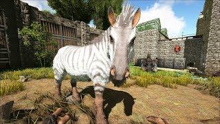 ARK: Survival Evolved - Уроки выживания. Урок 111. Эквус и овца - интересный функционал.