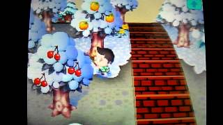 Animal Crossing Wild World - Ma ville parfaite / Comment l'avoir
