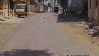 Lajpur - A Village located in Gujarat, India (Near Surat City)