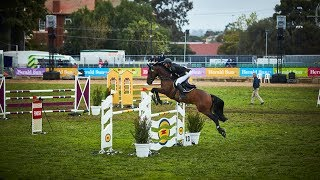 Prince of Wales Cup - Jumping - 2018 Royal Melbourne Show Horses In Action