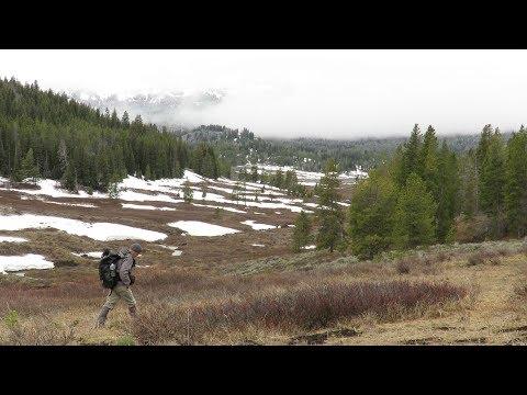 Hiking Greater Yellowstone - May 12, 2018