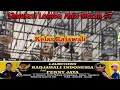 Simulasi Lomba Anis Merah   Gantangan Penny Jaya Yogyakarta  Mp3 - Mp4 Download