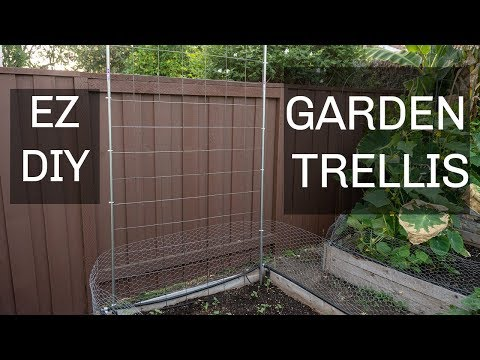 Easiest & Cheapest DIY Trellis For Cucumbers, Beans & Other Plants Using EMT Conduits & Cattle Panel