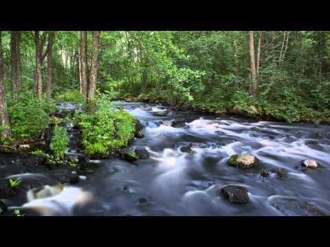 3 Hours of White Noise (Bruit Blanc), Relaxing and Soothing River Sound for Sleep and Concentration