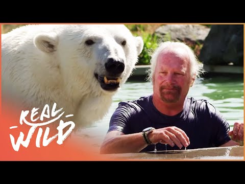 Meet The Polar Bear That Purrs For Her Human! | Real Wild