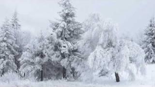 Gentle Winter Breeze (Gentle Breeze