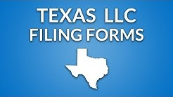 Texas LLC - Formation Documents