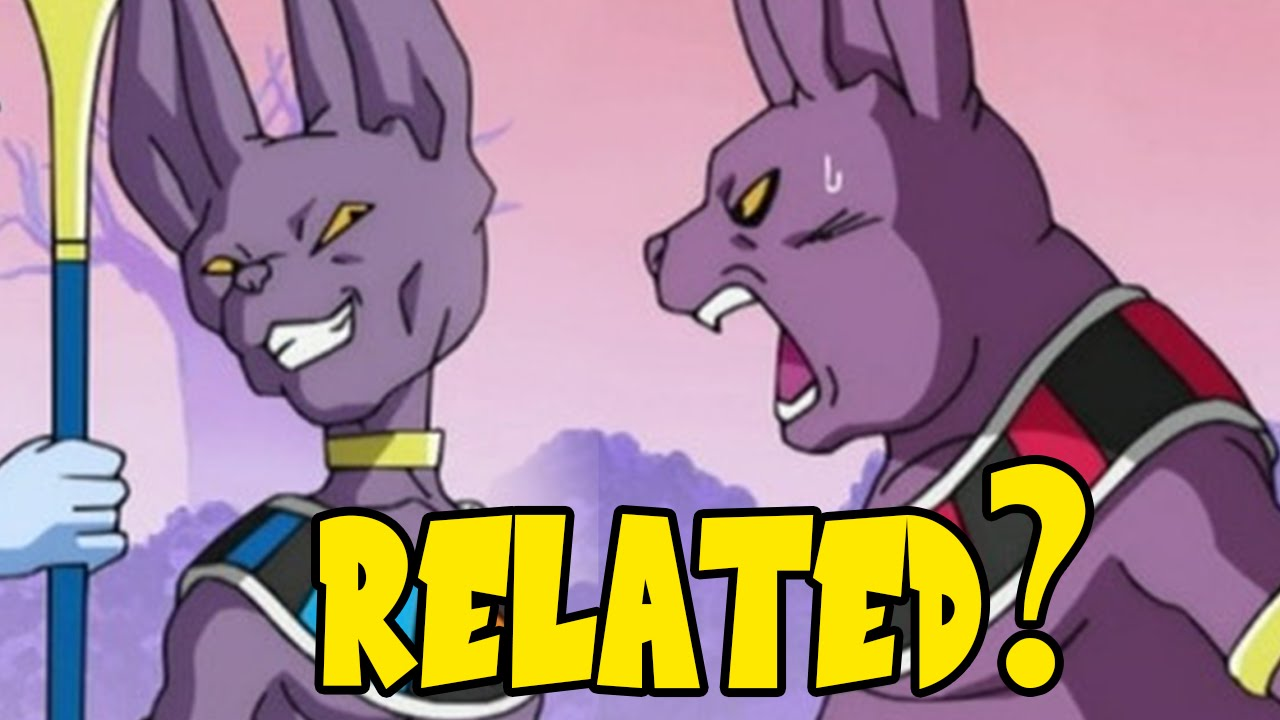 dragonball super are beerus and whis related to champa and female