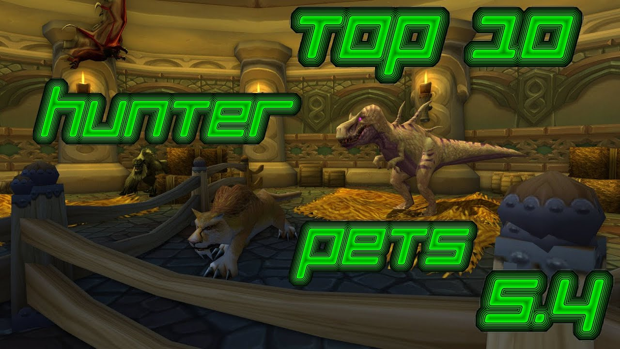 Wow top 10 hunter pets 5 4 wow top 10 j ger begleiter 5 for Wow portent 5 4