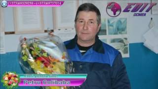 Colibaba Petru