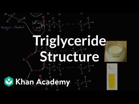 Molecular structure of triglycerides (fats) | Biology | Khan Academy