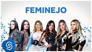 Baixar FEMINEJO - Os Melhores Clipes 2019