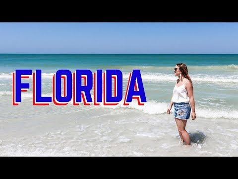 Read This Before Visiting Tampa Florida Travel Guide