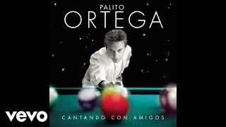 Palito Ortega - He Sabido Que Te Amaba (Pseudo Video)
