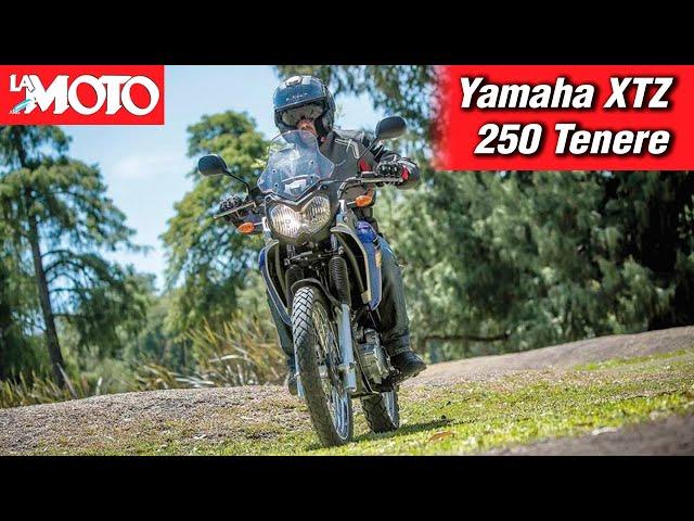 Presentación: Yamaha XTZ250Z