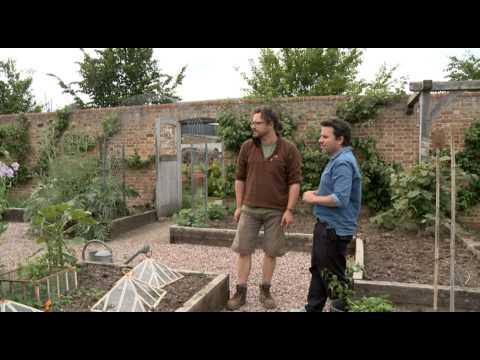 Jamie Oliver's garden tour
