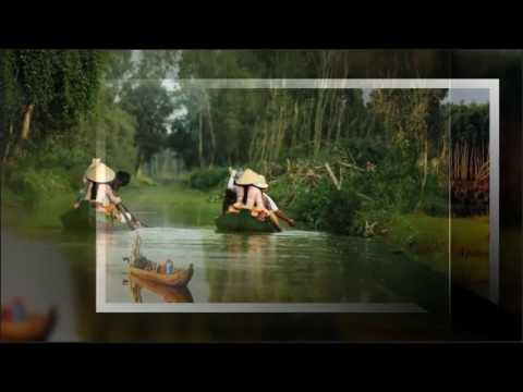 Top Travel | Gao Giong eco tourism area in Dong Thap province