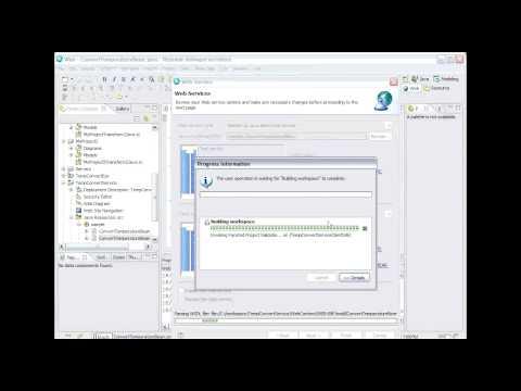 IBM Rational Software Delivery Platform: Web Services (7 of 9)