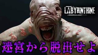 【Labyrinthine】4人で協力して怪物潜む迷路から脱出するホラーゲーム!
