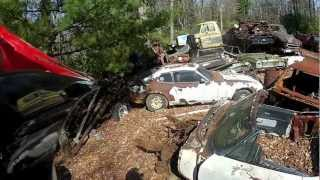 Found a Junk yard deep in the woods
