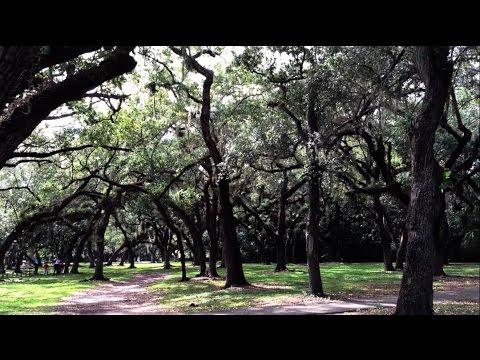 Matheson Hammock Park - Florida (Coral Gables) | Au Pair vlog #5