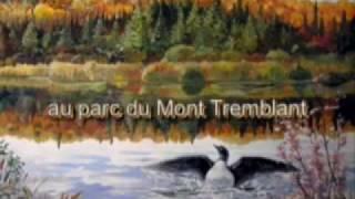 4 jours en Octobre au Parc du Mont Tremblant