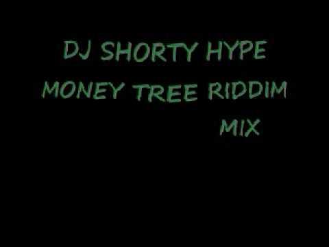 NEW DJ SHORTY HYPE MONEY TREE RIDDIM MIX.wmv