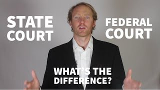 The State and Federal Court Systems Explained