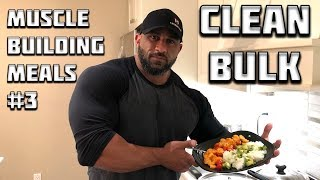 MUSCLE BUILDING MEALS #3 - 672 Cal Clean Bulking Meal!