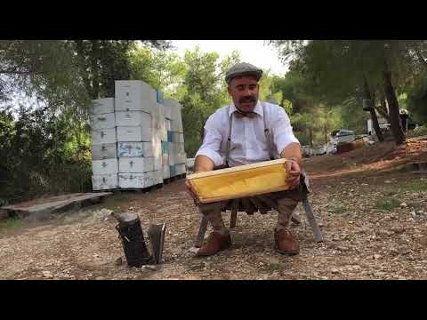 beekeeping dating