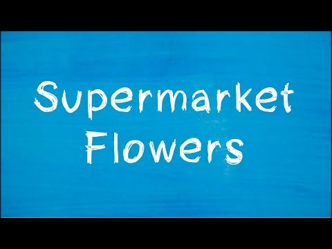 Ed Sheeran - Supermarket Flowers (Lyrics Video)