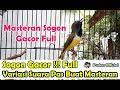 Sogon Gacor Full Variasi Suara Pas Buat Masteran Segala Jenis Burung Kicau  Mp3 - Mp4 Download