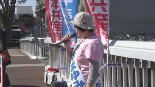 【高画質】日本共産党・茨城県つくば市の新人、山中まゆみさんの街頭宣...