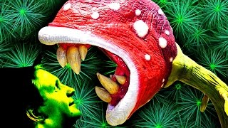 5 самых СМЕРТЕЛЬНЫХ растений на Земле!