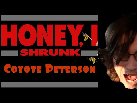 Honey, I Shrunk Coyote Peterson