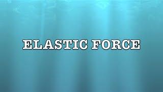 Elastic Force