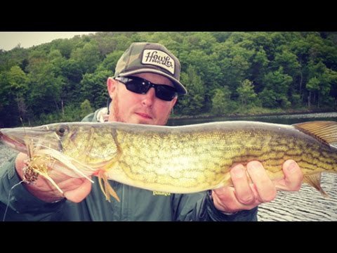 Outdoor Journal - Fishing For Chain Pickerel